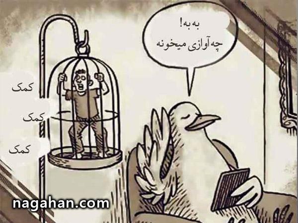وقتی جای انسان و حیوان عوض بشه! + عکس