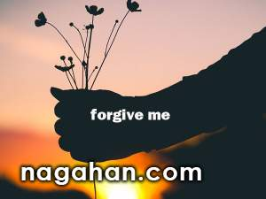چرا و چگونه کسی را ببخشیم؟روان شناسی بخشش+ تمرین مراحل کاربردی بخشش