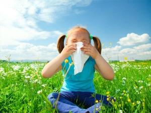 6 خوراکی که با آلرژی فصل بهار می جنگد!