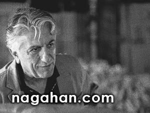 نظر رضا کیانیان درباره فحاشی ها در برنامه هفت و تقدیم جایزه شهاب حسینی !
