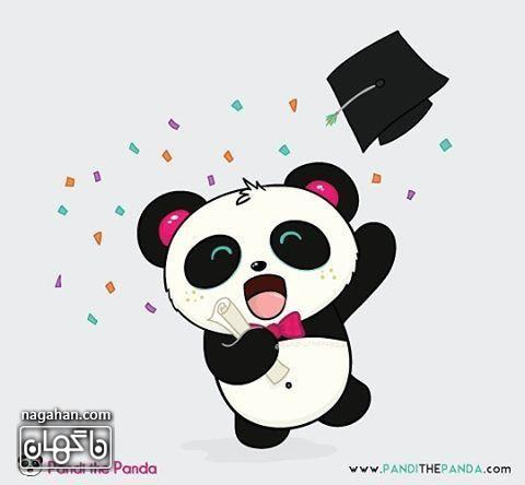 عکس پروفایل کارتونی پاندا در جشن فارق التحصیلی