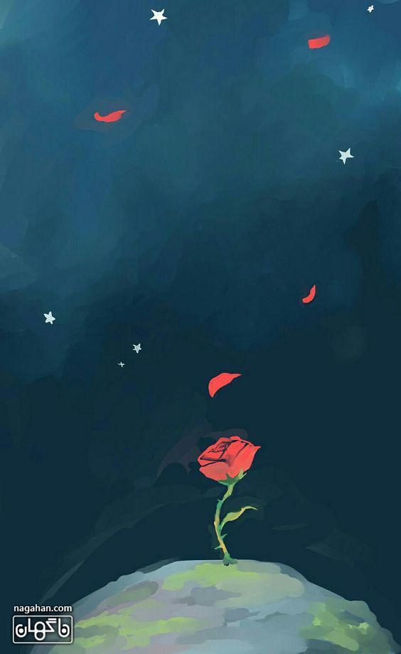 عکس شاخه گل سرخ شازده کوچولو