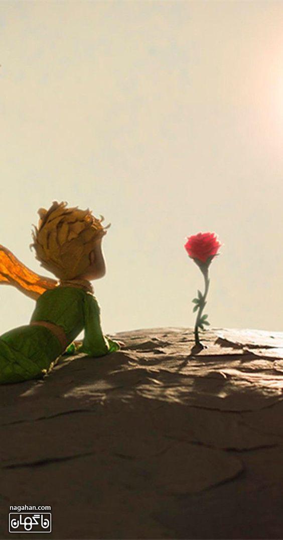 عکس شازده کوچولو و شاخه گل سرخ